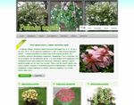 Цветочный рай + edem-flowers.com